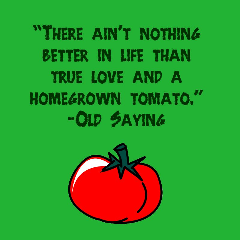 28749963-gardening-quotes-homegrown-tomatoes
